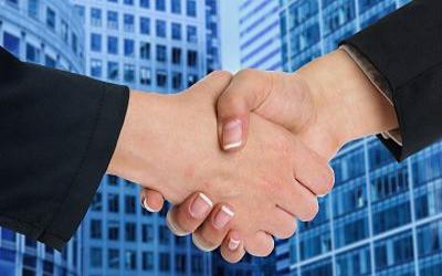 Actividades legales en las que puede participar una LLC.